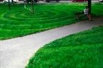 parc 1,installatioin situ,gazon,motifs,spirale,ondulation,carrelage